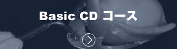 02_Basic_CD.png